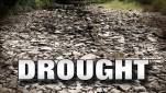 Drought-(1)