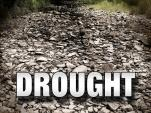 Weather - Drought (1)