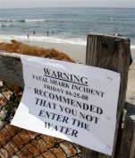 FILE - In this April 25, 2008, file photo, people enter the water near a shark warning sign at Cardiff State Beach in Encinitas, Calif. Swimmers and surfers today are about 90 percent less likely to be attacked by sharks off California's coast than they were in the 1950s, despite the fact that there are hundreds of thousands of more people in the water, according to a new study. (AP Photo/Denis Poroy, File)
