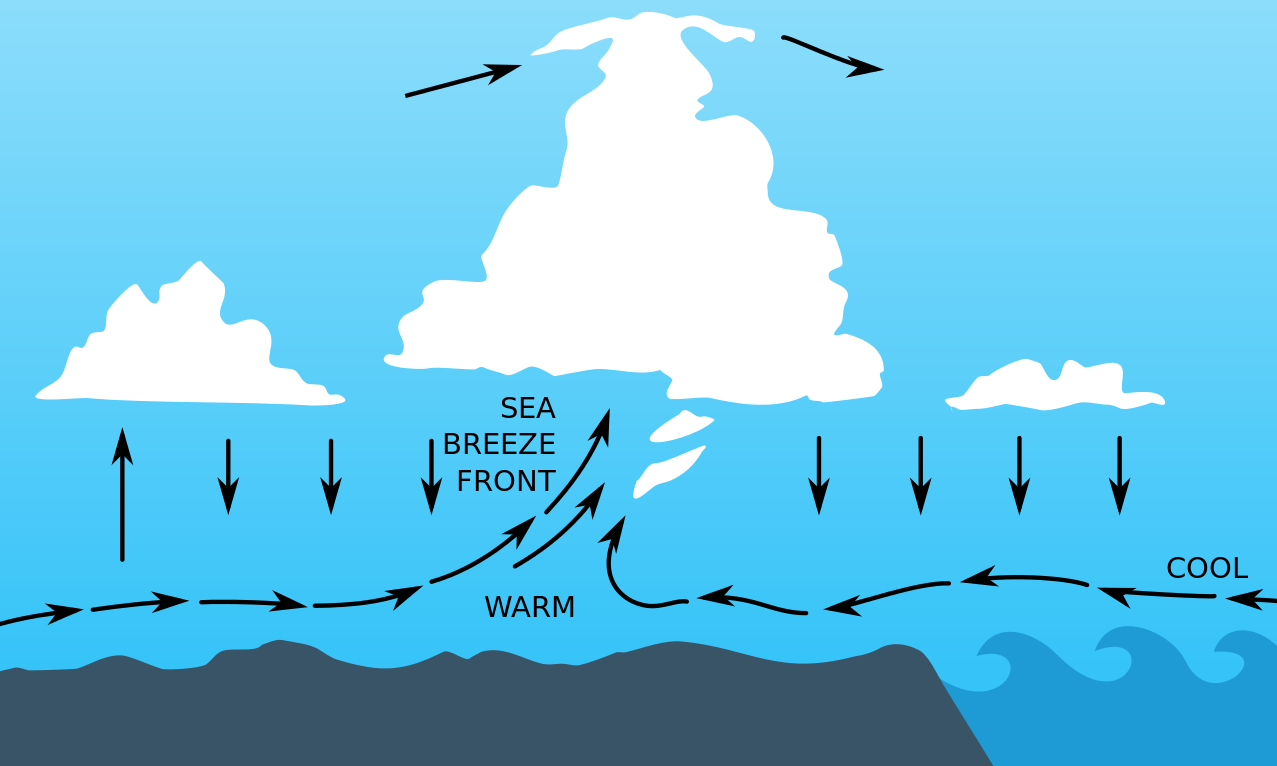 How does wind affect weather?