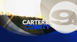 carteret county stinger