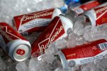 FILE - In this Thursday, March 5, 2015 file photo, Budweiser beer cans at a concession stand at McKechnie Field in Bradenton, Florida, USA.  Anheuser-Busch InBev, the owner of the world's biggest brewer Budweiser, on Wednesday Oct. 7, 2015, raised its takeover offer for rival SABMiller to more than 68 billion pounds ($104 billion), but the offer was rejected. (AP Photo/Gene J. Puskar, File)