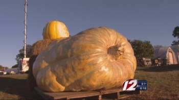 huge-pumpkin