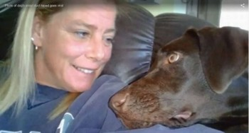 Katharine F. Lemansky, 45, whose Facebook page lists her as Katie Brown, is charged with Class 1 Misdemeanor Cruelty to Animals. The charge carries a fine & up to 150 days in jail.