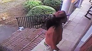 gpd package thief