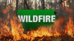 Wildfire 32416dp