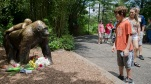 Visitors pass a gorilla statue where flowers have been placed outside the Gorilla World exhibit at the Cincinnati Zoo & Botanical Garden, Sunday, May 29, 2016, in Cincinnati. On Saturday, a special zoo response team shot and killed Harambe, a 17-year-old gorilla, that grabbed and dragged a 4-year-old boy who fell into the gorilla exhibit moat. Authorities said the boy is expected to recover. He was taken to Cincinnati Children's Hospital Medical Center. (AP Photo/John Minchillo)