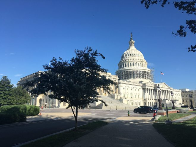 Congress gets back to work on Capitol Hill