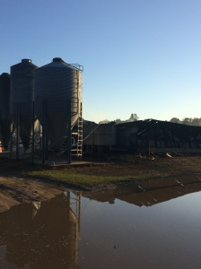 duplin-hog-farm-fire-4