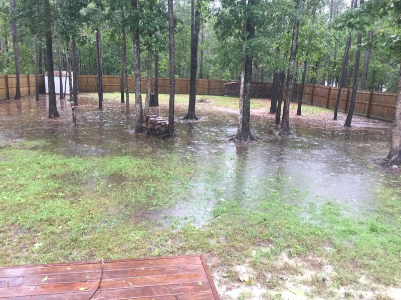 flooded-yard