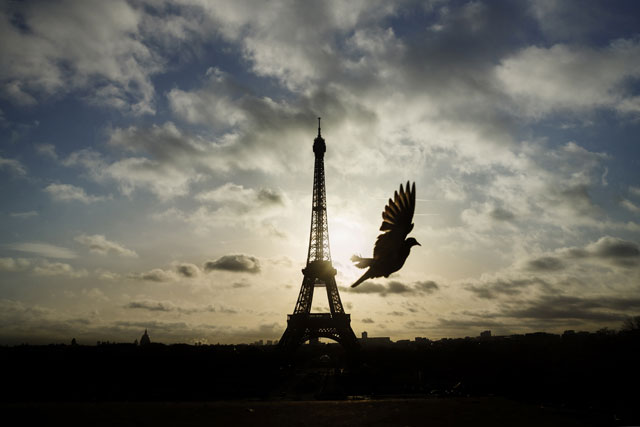 In this Sunday, Nov. 15, 2015 file photo, a bird flies in front of the Eiffel Tower, Paris, which remained closed on the first of three days of national mourning, in Paris. France is preparing to mark one year since the attacks with commemorations on Sunday Nov. 13, 2016. (AP Photo/Daniel Ochoa de Olza, File)