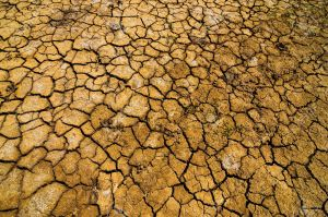 16765727-cracked-parched-earth-in-a-desert-in-la-guajira-colombia-stock-photo