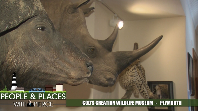 gods-creation-wildlife-museum-for-web