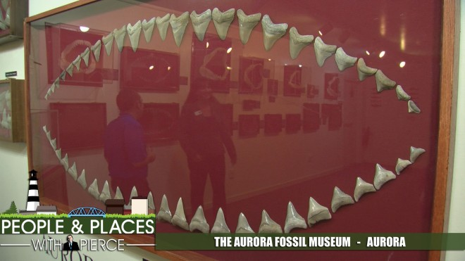 aurora-fossil-museum-ppp-for-web