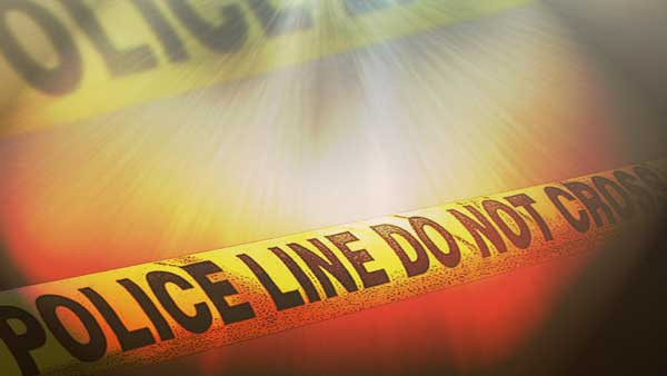 Shots fired at Tarboro police auto after traffic stop