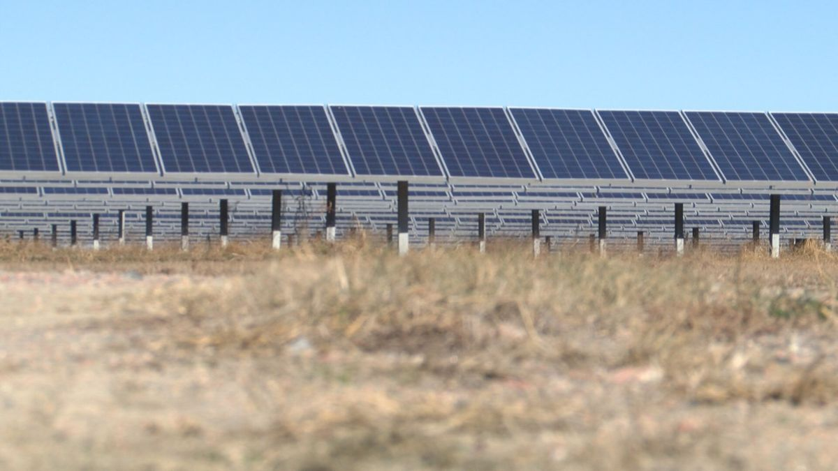 The Unseen Cost Of Solar Farms On Taxpayers In North